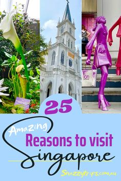 Incredible Facts About Singapore. These facts will inspire you to visit Singpore, a country which has so much to offer holiday makers. #singaporetravel #singaporefacts #singaporeblog #singaporeholiday Singapore Travel Tips, Singapore Itinerary, Visit Singapore, Luang Prabang, Laos, Sands Resort, Indoor Waterfall, Travel Inspiration, Travel Ideas