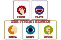 How To Use and Take Advantage Of The Five Senses To Boost Pure Sex Pleasure - https://www.maleenhancementpr.com/boost-sexual-arousal-through-the-five-senses/