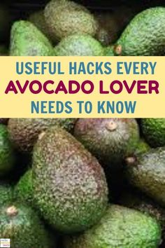 From delicious recipes to skincare tips and beyond, we're talking about 23 amazing ways to use avocados every day. Keep reading!. #avocado #lover #recipes #healthy Recipe Girl, Recipe For Mom, Healthy Tips, Healthy Recipes, Delicious Recipes, Avocado Recipes, Healthy Meals, Keto Recipes, Vegetarian Recipes