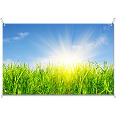 Tuinposter Grasland | Maak je tuin nog mooier met een weerbestendige tuinposter van YouPri. Bewezen kleurbehoud! #tuinposter #tuindoek #tuin #poster #weerbestendig #kleurbehoud #frontlit #goedkoop #voordelig #spanners #ogen #natuur #gras #lucht #hemel #blauw #groen #zon #zonneschijn #zonnestralen