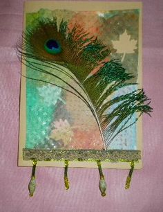 Peacock Feather on Cutout Images