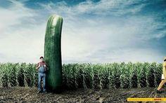 Carteles de publicidad muy creativa