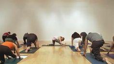 kathryn budig vinyasa preview on yogaglo.com