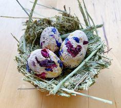Bird's Nest Treat / High Fiber / Bunny Rabbit Guinea Pig | Etsy Rabbit Shop, Pet Rabbit, Homemade Rabbit Treats, Rabbit Ideas, Veterinary Care, Pet Treats, Easter Treats, Diy Toys, Spring Colors