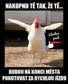 Funny Memes, Jokes, Humor, Funny People, Awkward, Haha, Ideas, Humour, Jokes Quotes