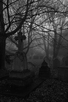 Foggy cemetery.
