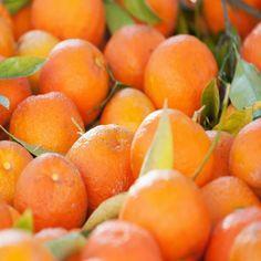 Buying and using seasonal fruit: Seville oranges - Good Housekeeping Seville Orange Marmalade, Meal Calendar, Sour Orange, Incredible Edibles, Seasonal Food, Orange Recipes, Fruit In Season, Good Housekeeping, Kitchen Hacks