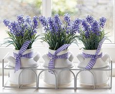 Do you know the saying.... 'In the lavender haze' ?  It's a slang from the 50s meaning ► 'being in love'