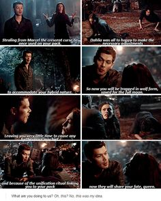 the originals 2x21 lol Klaus has done lost his mind but it is Haylie's fault trying to take Hope from her dad. Series Movies, Movies And Tv Shows, Tv Series, Vampire Diaries Cast, Vampire Diaries The Originals, Joseph Morgan, The Originals 3, Whisper Quotes, Klaus And Caroline