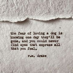 So very true. On my worst of days Guinnie knows. I love her more than life. Robert M Drake, R M Drake, Rm Drake Quotes, Me Quotes, Weird Quotes, Fear Of Love, Death Quotes, Magic Words, Some Words