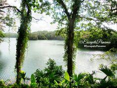 Hotel Meliá -De escuela de Dictadores a Hotel 5 estrellas  #Panama #Turismo #PTY