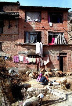 Old house, Kathmandu