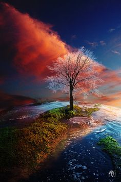 Beautiful tree and scenery Beautiful World, Beautiful Images, Beautiful Things, Image Nature, Nature Scenes, Nature Pictures, Amazing Nature, Belle Photo, Pretty Pictures