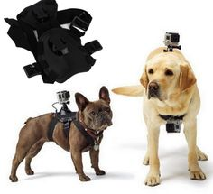 Dog Harness Kit for GoPro The chest fixing strap allows for recording from the dog's point of view. All adjustments are padded to ensure pet comfort. Perfect for GoPro HD Hero 2, 3, 3+ and 4 cameras.