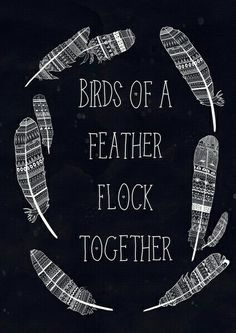 Essay on birds of a feather flock together