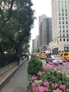 Life Recently - NYC