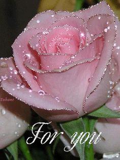 flower gifs