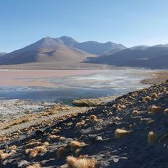 So many beautiful landscape pictures to choose from! This is Laguna Colorada in Bolivia. #bolivia #travel #carasharratttravel