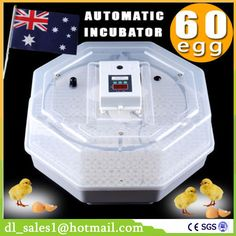 >> Click to Buy << Home Use Cheap Poultry Incubators Hold 60 Egg Digital Fully Automatic Mini Incubator Poultry Chicken Duck Hatching Tool JN5-60 #Affiliate
