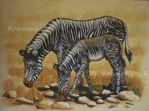 Zebra & Fohlen