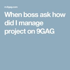 When boss ask how did I manage project on 9GAG