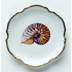 Anna Weatherley painted shell