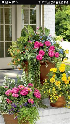 Flower Container Gardening Ideas that are beautiful and lush. Easy to grow flower planters that will inspire your home's flower container gardening ideas. Container Flowers, Container Plants, Container Gardening, Vegetable Gardening, Organic Gardening, Succulent Containers, Gardening Blogs, Plastic Planters, Flower Planters