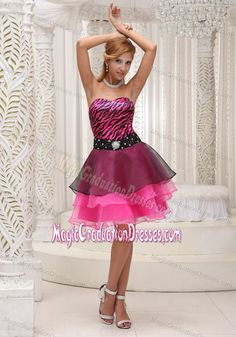 dce91e12e0891 Pink and Black Zebra Beaded Decorate Graduation Dresses for High School  Prom Dress 2013, Pageant