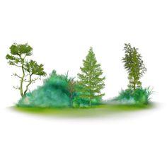 ptitesouris element 108 (Копировать).png ❤ liked on Polyvore featuring tree