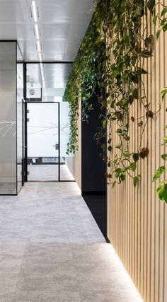 Heidrick & Struggles Amsterdam by Hollandse Nieuwe - Wooden wall with plants as roomdivider