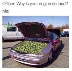 50 Hilarious Weed Memes That Are Better Than Hotboxing A Honda Civic Weed Backgrounds, Weed Jokes, Weed Funny, Bf Memes, Creative Profile Picture, Stoner Art, Trippy Wallpaper, Puff And Pass, Happiness Quotes