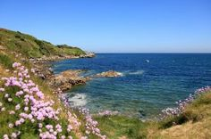 Le littoral escarpé, figure représentative de la Manche © D.Daguier