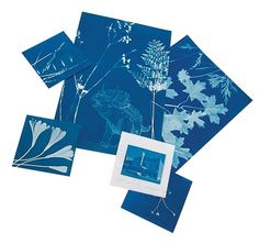 Cyanotype Fabric. I have Ideas. Capitalization intentional.