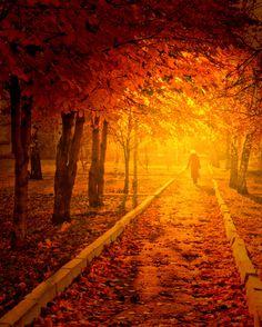 Autumn park by Natalia Flora on 500px