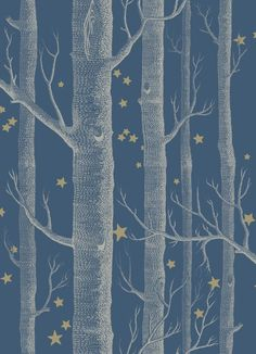 Woods & Stars Wallpaper A Cole's classic wallpaper with a twist, cream trees with gold stars on a dark teal background tapetti Stars Wallpaper, Kids Wallpaper, Wallpaper Roll, Wallpaper Patterns, Birch Tree Wallpaper, Blue Wallpaper Bedroom, Charcoal Wallpaper, Paint Wallpaper, Painting Art