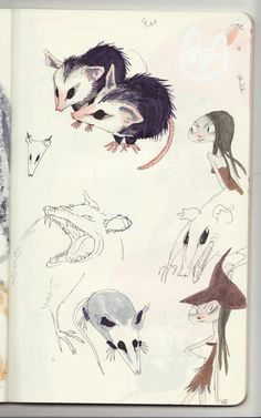 Awesome Possum (har har) sketches by Katie Rice from her blog Funny Cute.