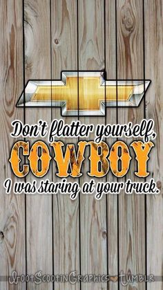 Don't flatter yourself cowboy