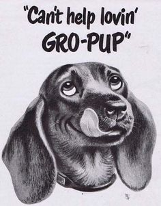 Vintage dog food ad featuring a dachshund -- Gro-Pup