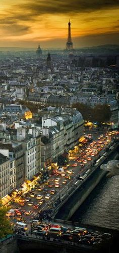 A view from the sky ~ Paris, France