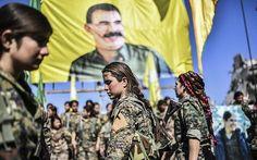 Mısır Dışişleri Bakanı: Suriyeye Arap askeri gönderilebilir