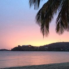 Palm trees leaning over soft waves set against a multicoloured sky shows Carlisle Bay at its best #sunset #beach #caribbean #holiday #romance