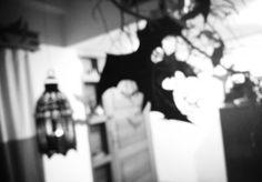 Vampire themed party decor