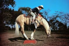 Dale Evans, Roy Rogers, Happy Trails, Cowgirls, Celebrity Crush, Cowboys, Movie Stars, Westerns, Movie Tv