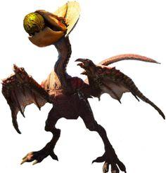 """Monster Hunter """"Yian Kut-Ku"""""""
