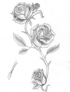 Rose and Thorns by IsAlwaysInspired.deviantart.com on @deviantART