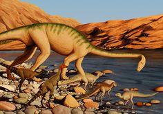 Various Triassic ornithischians and a Massospondylid by Apsaravis (apsaravis.tumblr.com)