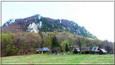Slovenská krajina - Hledat Googlem Country Roads