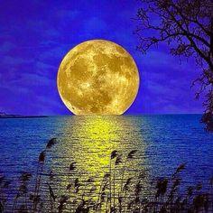 A beautiful moon rise. Moon Moon, Moon Rise, Moon Art, Blue Moon, Moon Shadow, Sombra Lunar, Shoot The Moon, Moon Photos, Full Moon Pictures