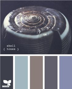 Shell tones - greys and blues colour / color palette inspiration.
