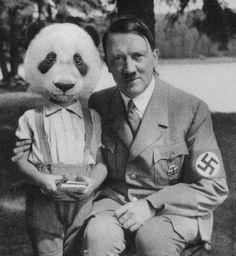 Panda boy and Hitler